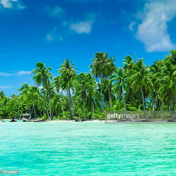 Palm Dream Beach