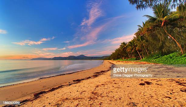 Palm fringed tropical beach at sunset