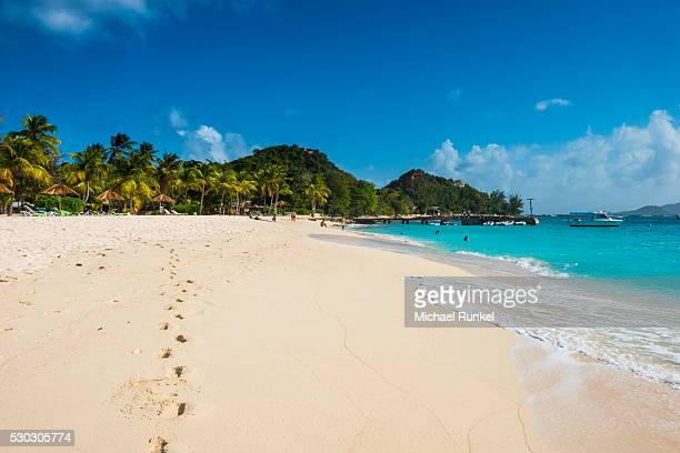 palm fringed white sand beach on palm island, the grenadines, st. vincent and the grenadines, windward islands, west indies, caribbean, central america - セントビンセント島 ストックフォトと画像