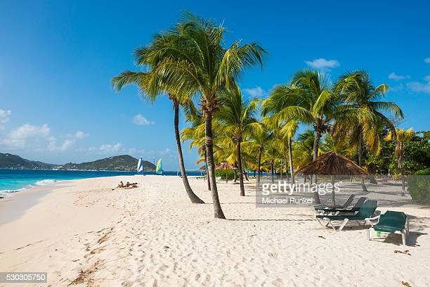 palm fringed white sand beach on palm island with union island in the background, the grenadines, st. vincent and the grenadines, windward islands, west indies, caribbean, central america - セントビンセント島 ストックフォトと画像