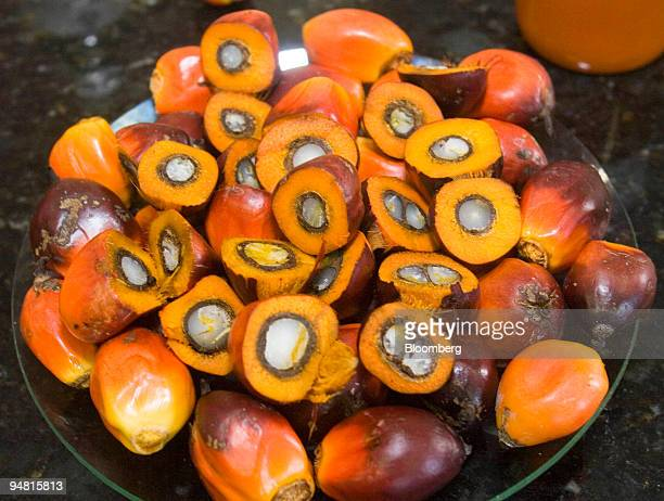 Palm fruit is pictured at the Agropalma Group plantation in Tailandia Para Brazil on Monday March 27 2006 Agropalma produces biodiesel from the fruit...