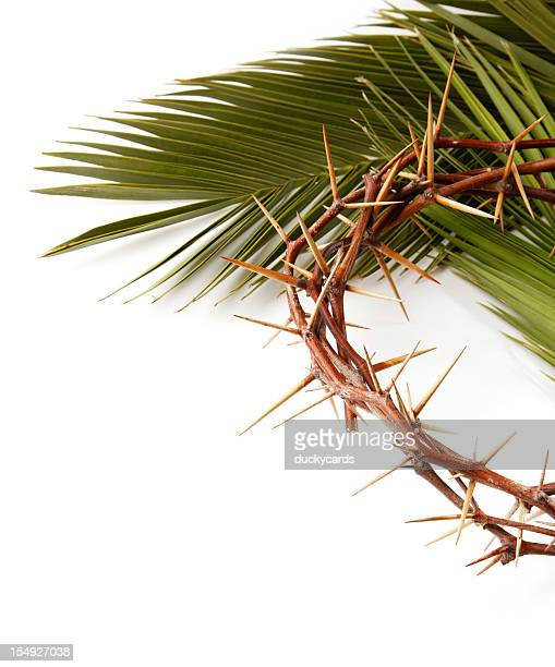 palm leaf and crown of thorns on white - palm sunday stock pictures, royalty-free photos & images