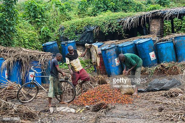 Palm oil - production in Burundi