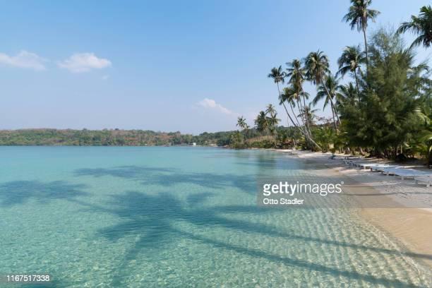 palm shadow on sea at bang bao beach on ko kut island - golf von thailand stock-fotos und bilder