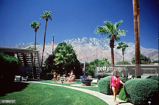 Palm Springs Ca Tranquil Views Of The SnowCapped Mountains From The Grounds Of The Terra Cotta Inn
