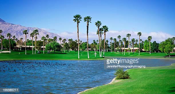 Palm Springs Golf Course Panoramic XXXL