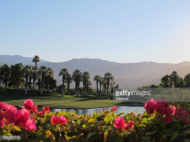 Palm Springs golf course with lush greens and plants