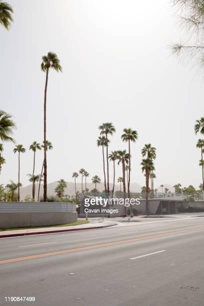 palm springs street - palm springs stock-fotos und bilder