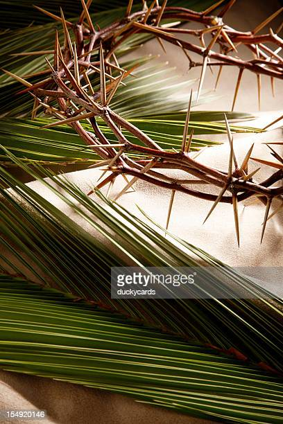 palm sunday and good friday background - palm sunday photos stock pictures, royalty-free photos & images
