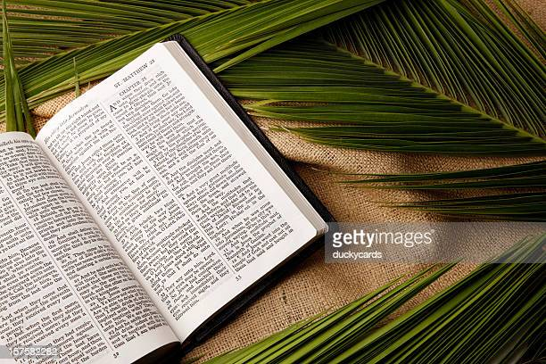 palm sunday bible and palms branches - palm sunday stock pictures, royalty-free photos & images