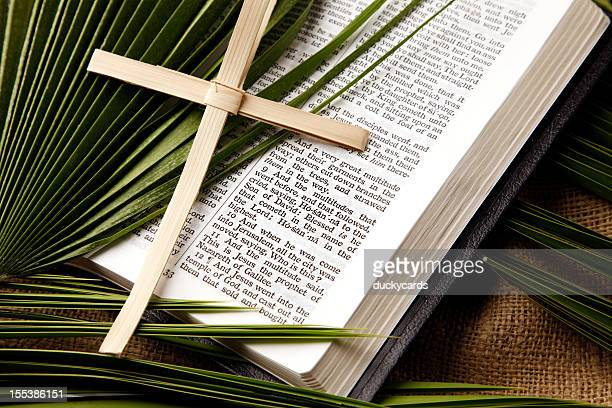 palm sunday bible passage and symbols - palm sunday stock pictures, royalty-free photos & images