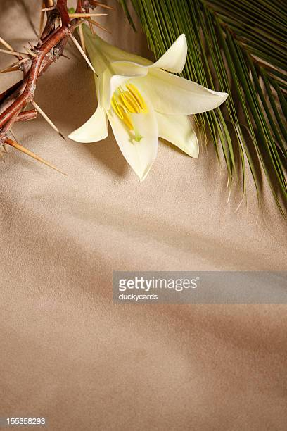 palm sunday, good friday and easter - palm sunday photos stock pictures, royalty-free photos & images