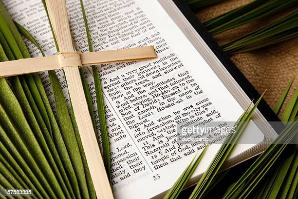 palm sunday kjv bible and palms branches - palm sunday stock pictures, royalty-free photos & images