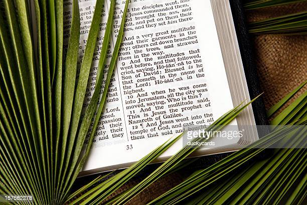 palm sunday matthew 21 triumphal entry of christ - palm sunday stock pictures, royalty-free photos & images