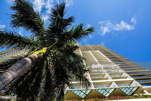 Palm tree and exterior of Trump International Hotel Waikiki Beach Five Star luxury hotel residences owned by Donald Trump wealthy outspoken...