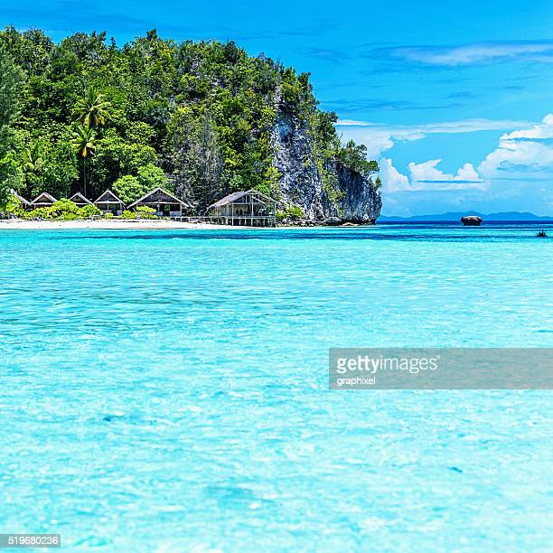 palm tree and huts on tropical beach - raja ampat islands stock photos and pictures