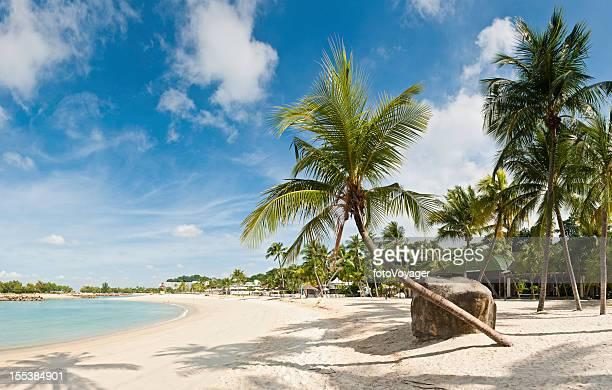 Palm tree beach resort Insel Sentosa, Singapur