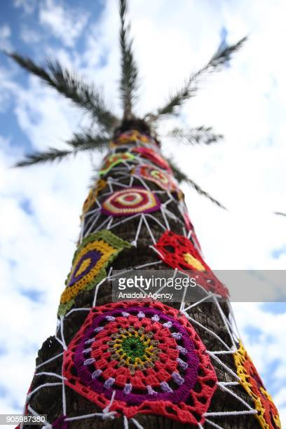 A palm tree decorated with woolen products is seen during the Woolen Tales exhibition at Migros Shopping Mall in Antalya Turkey on January 17 2018...