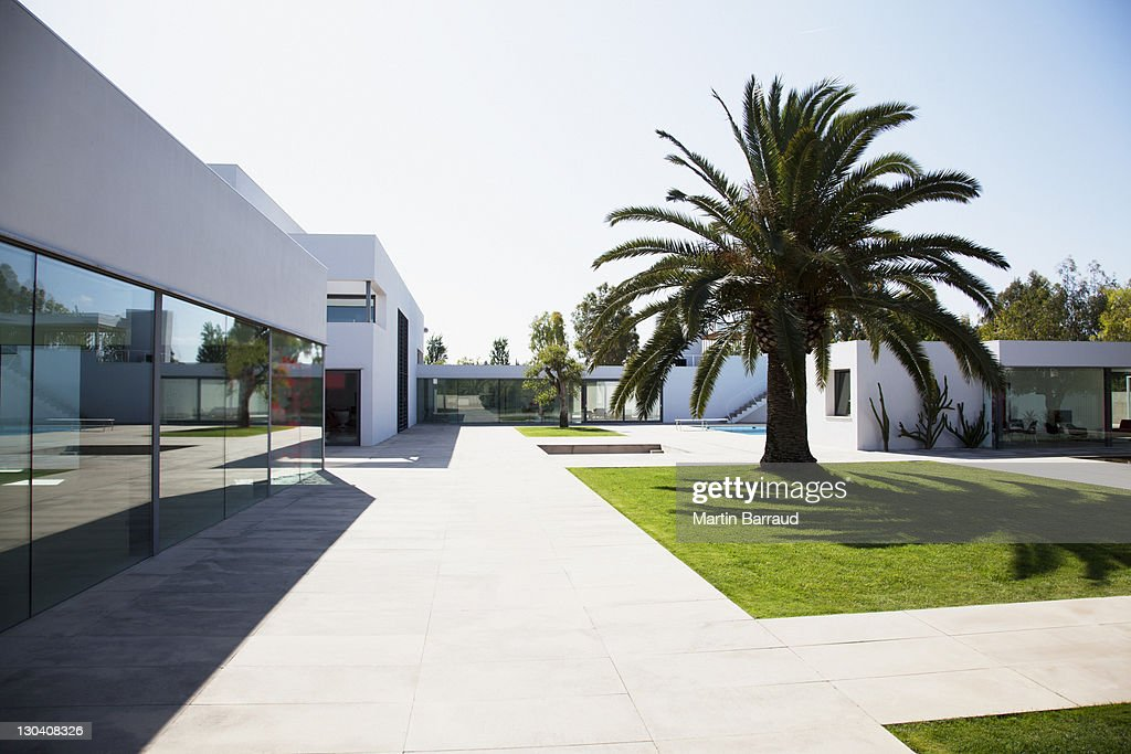 Palm tree in courtyard of modern house : Stock Photo