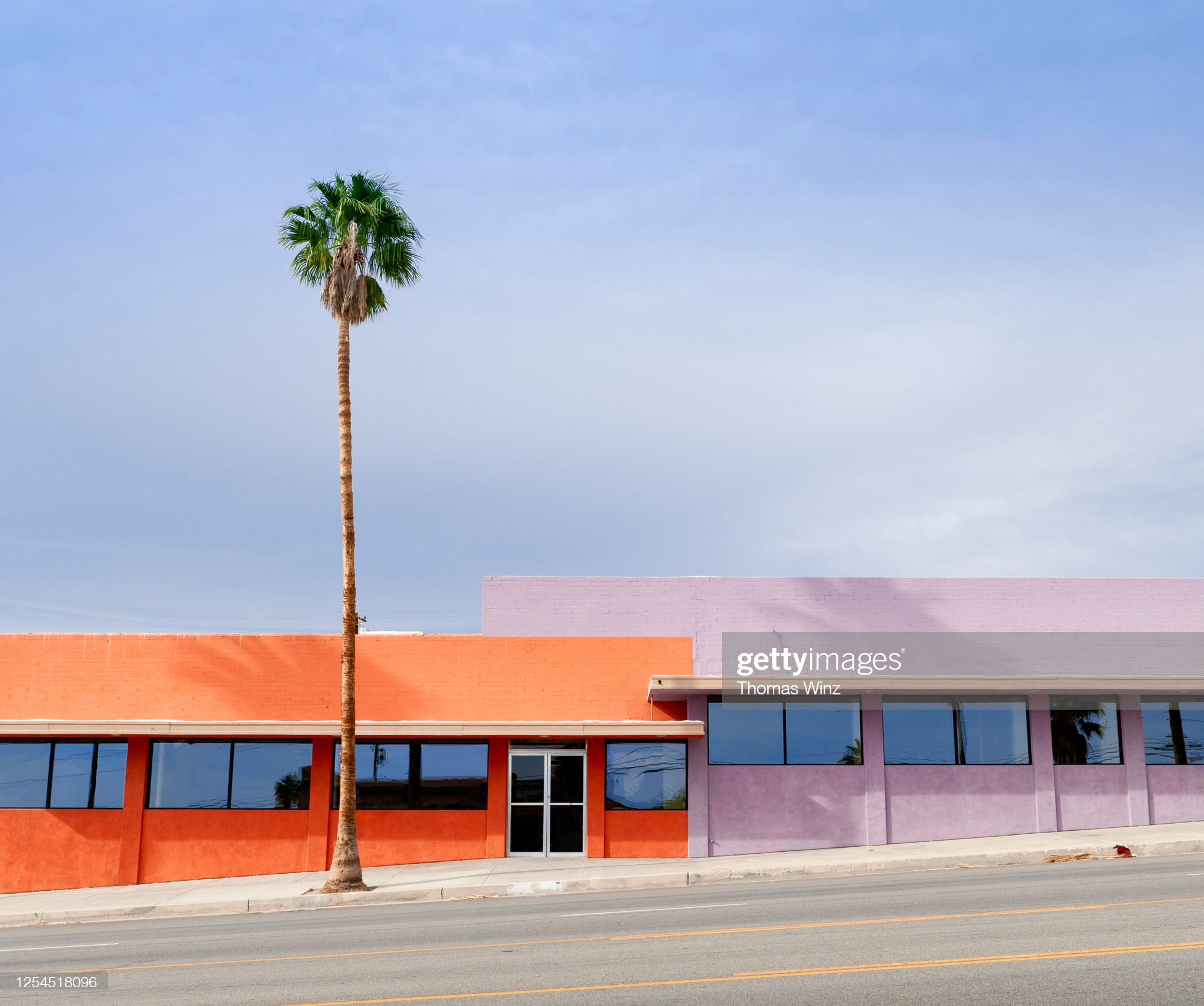Palm tree in front of colorful buildings : Stock Photo