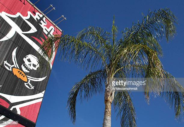 A palm tree is seen in front of the Tampa Bay Buccaneers logo prior to the NFC Wild Card game against the New York Giants at Raymond James Stadium on...
