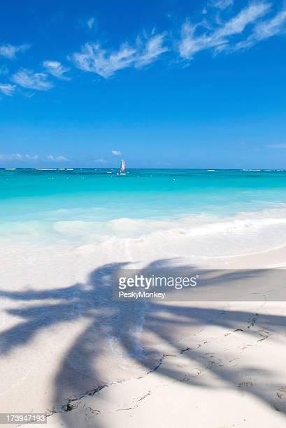 Palm Baum Schatten tropischer Strand
