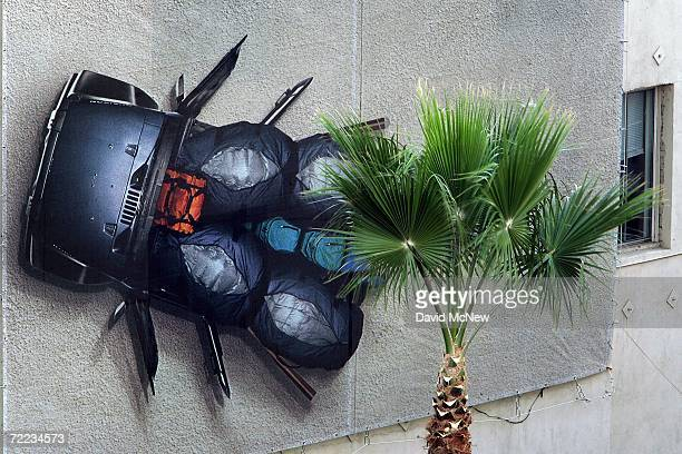 A palm tree stands next to an advertisement for another southern California symbol cars near Hollywood and Highland as many of the areas palms fade...