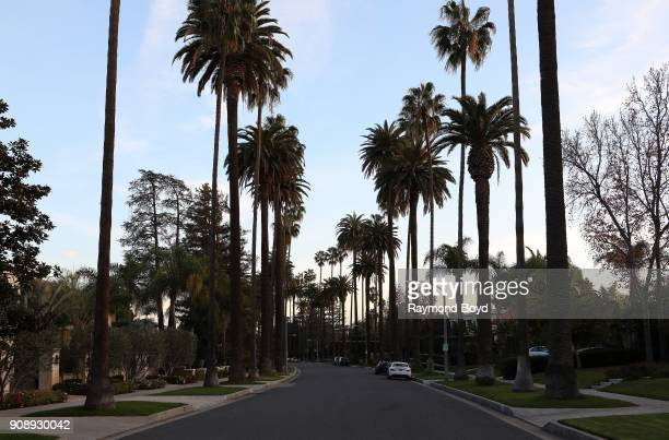 Palm tree-lined street in Beverly Hills, California on January 13, 2018.