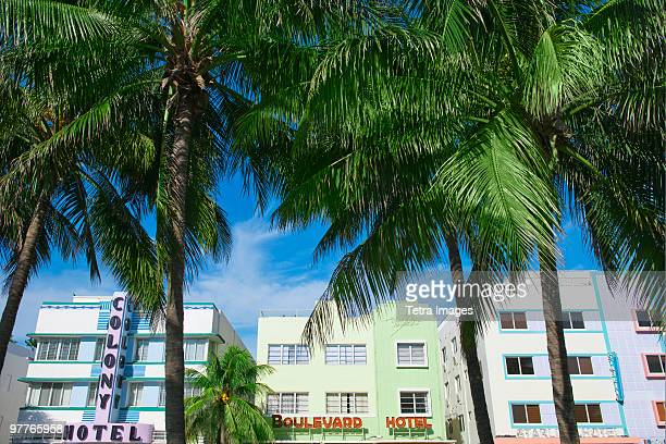 Palm trees and art deco buildings