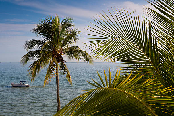 Palm trees and boat on North Channel of Strait of Melaka.