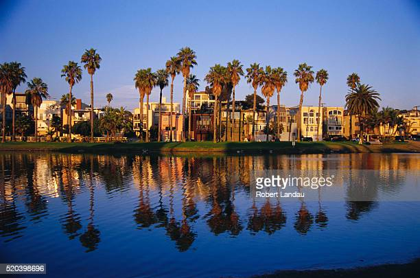 Palm Trees and Buildings in Marina Del Rey
