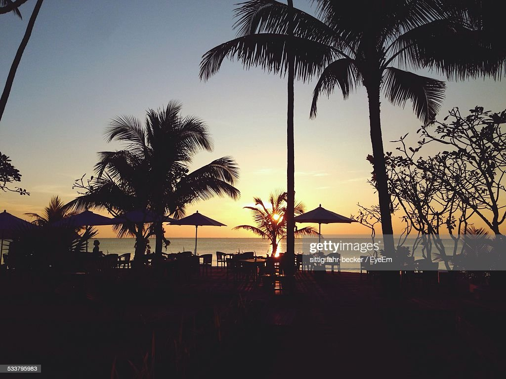 Palm Trees And Cafe On Beach At Sunset : Foto stock