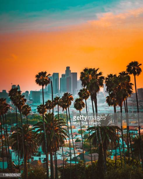 palm trees and cityscape against sky during sunset - de stad los angeles stockfoto's en -beelden