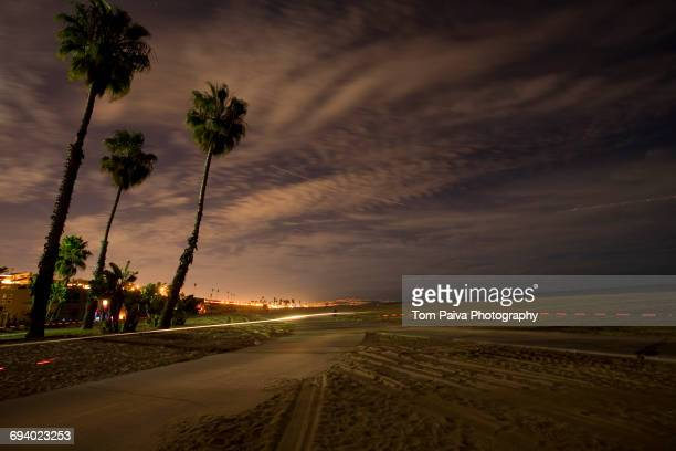 palm trees and path near ocean - la waterfront stock pictures, royalty-free photos & images