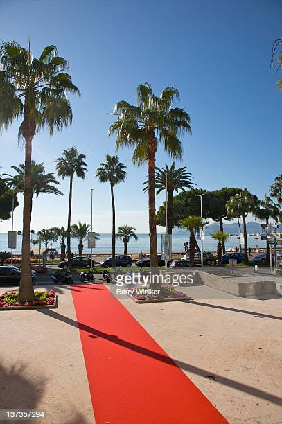 Palm trees and red carpet extending to the sea.