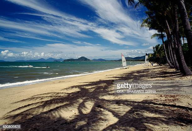 Palm trees and sail boats on the beach at Palm Cove near Port Douglas Queensland Australia