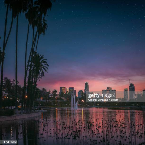 palm trees and sunset in los angeles - la waterfront stock pictures, royalty-free photos & images