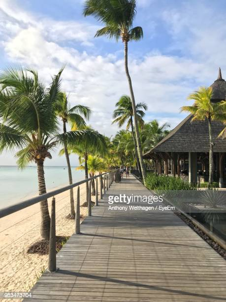 palm trees at beach against sky - port louis stock photos and pictures