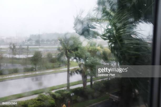 Palm trees blow in the wind as Hurricane Irma arrives into southwest Florida on September 10 2017 in Fort Myers Florida With businesses closed...
