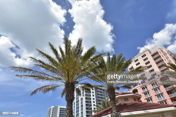 palm trees, clouds and resorts in background on clearwater beach, fl - clearwater beach stock pictures, royalty-free photos & images