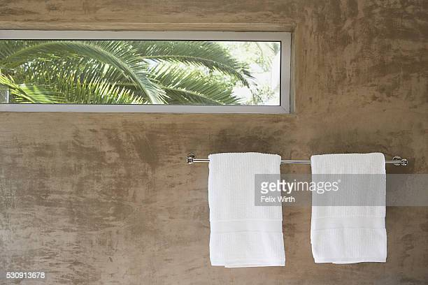 Palm trees glimpsed through a bathroom window