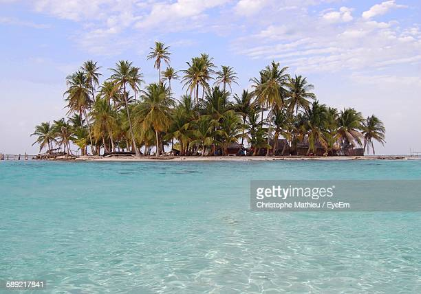 Palm Trees Growing On Island By Sea Against Sky
