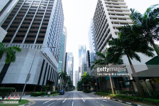 palm trees in office and finance district in singapore - singapore cbd stock pictures, royalty-free photos & images