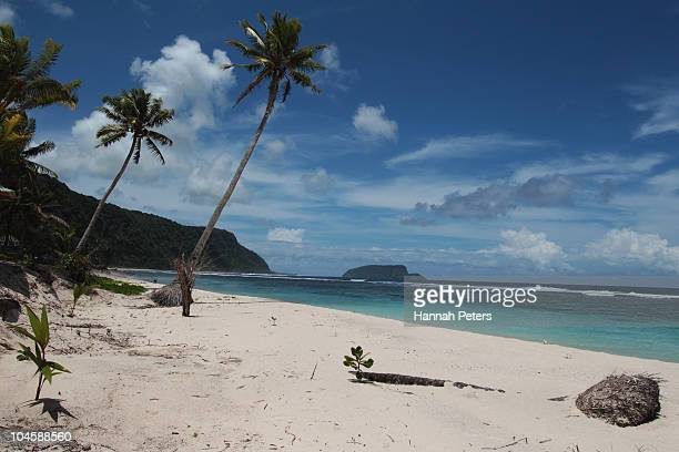 Palm trees line a clean beach on September 30 2010 in Saleapaga Samoa 189 people were killed and hundreds more injured in Samoa American Samoa and...