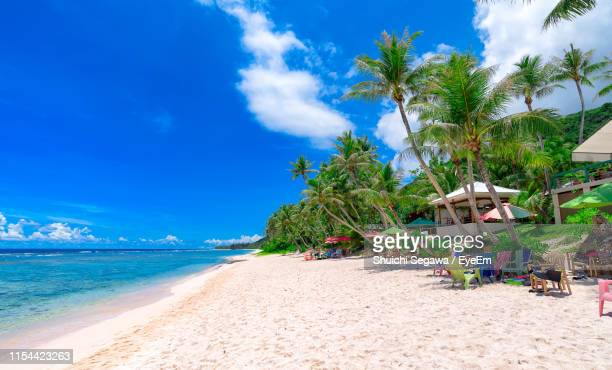 palm trees on beach against sky - guam stock pictures, royalty-free photos & images