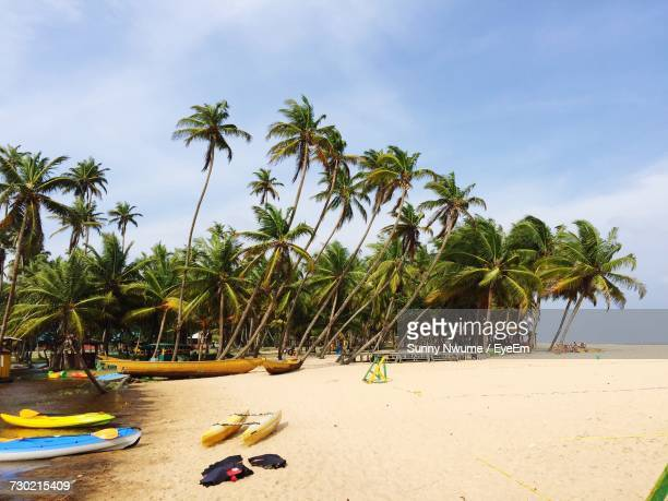 palm trees on beach against sky - nigeria stock pictures, royalty-free photos & images