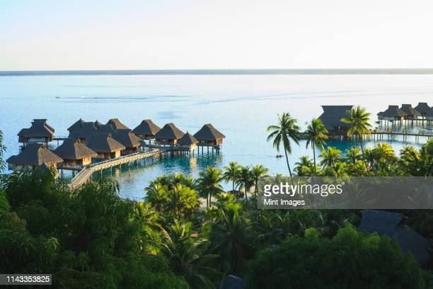 palm trees overlooking tropical resort, bora bora, french polynesia - atoll stock pictures, royalty-free photos & images