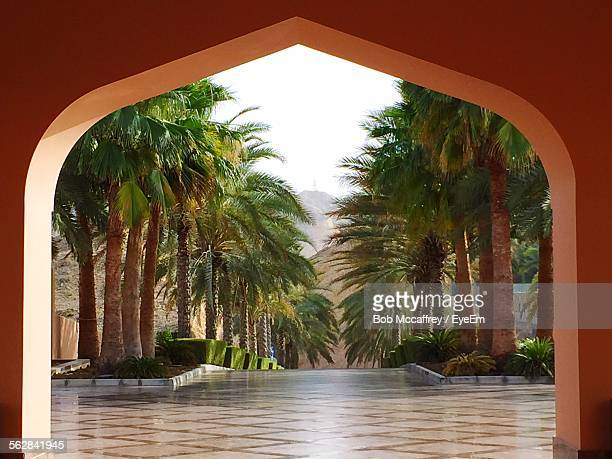 Palm Trees Seen Through Arch Of Building