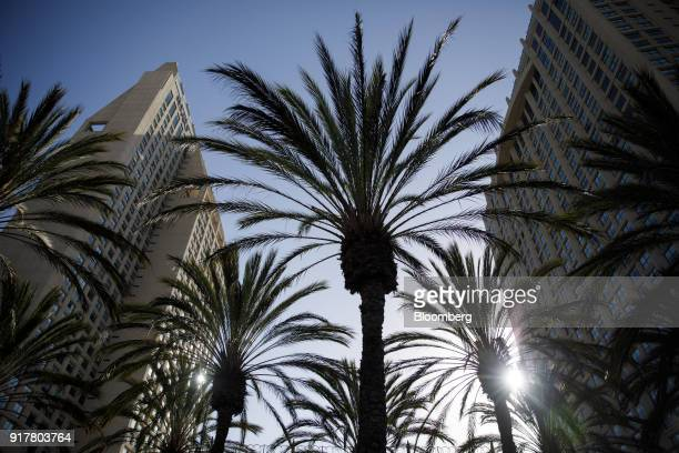 Palm trees stand in front of the Manchester Grand Hyatt Hotel stands in San Diego California US on Sunday Feb 11 2018 Hyatt Hotels Corp is scheduled...