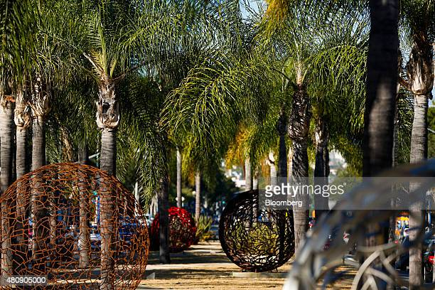 Palm trees stand next to a public art installation along the median on Santa Monica Boulevard in West Hollywood California US on Tuesday July 14 2015...